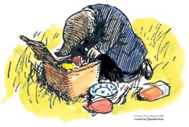 mole picnic